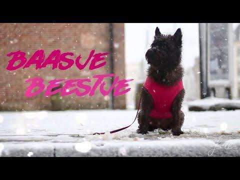 Meander Bigband - MIJN BAASJES BEESTJE (Official Music Video)