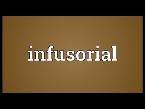 Header of infusorial