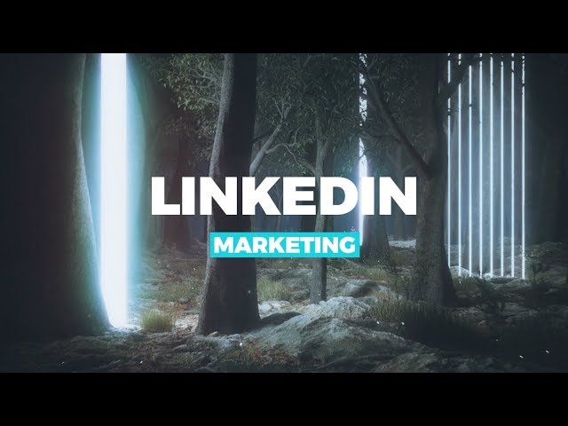 LinkedIn Marketing B2B für Unternehmen in Deutsch mit 10%+ Conversion-Rate mit Leads