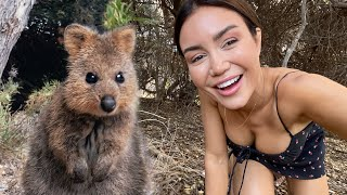 We Found The Worlds Happiest Animal | Quokkas In Rottness Island | Australia