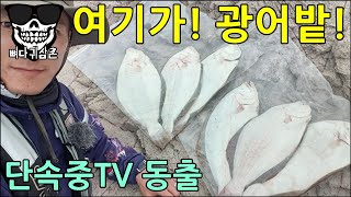 Download 서해 루어낚시 BJ 둘이 만났다! 광어 타작 가즈아! 단속중TV 뼈다귀삼촌