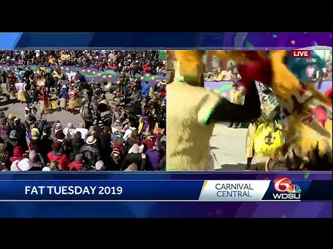 It's a party! Zulu Tramps make it to Gallier Hall for Mardi Gras 2019