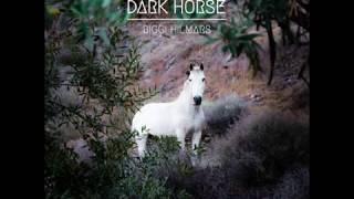 Biggi Hilmars – Dark Horse