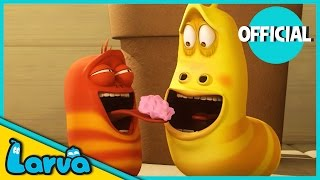 LARVA - BUBBLEGUM | 2017 Full Movie Cartoon | Videos For Kids | LARVA Official