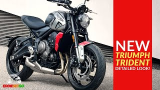NEW Triumph Trident - Detailed Look! | Motorcycle News