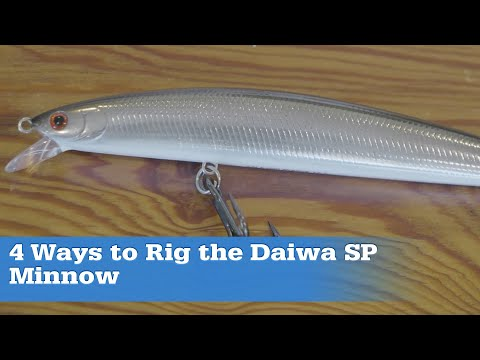 Rigging The Daiwa SP Minnow For Big Striped Bass