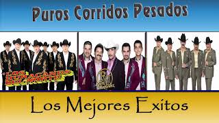 Puro Corridos Pesados Los Tigres Del Norte, Los Tucanes de Tijuana , Los Huracanes