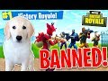 PUPPY WINS GAME OF FORTNITE BATTLE ROYALE! - (Fortnite Battle Royale Funny Moments) w/ MooseCraft