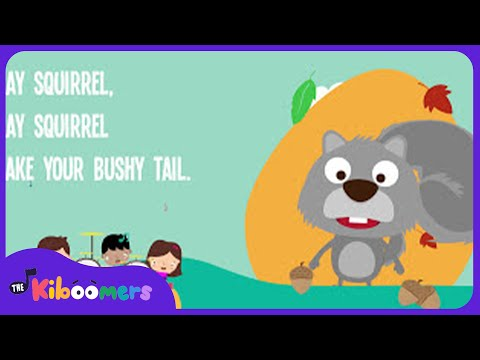 Grey Squirrel Shake Your Bushy Tail | Gray Squirrel | Kids Song | The Kiboomers