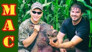 Hog hunting in Georgia