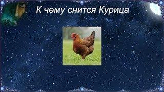 Мертвая курица серого цвета, например, сулит расправу с врагами.