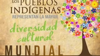 En el mundo existen 5 mil culturas indígenas diferentes
