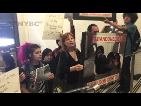Animal Rights Activists Stage Disruption at New York Blood Center