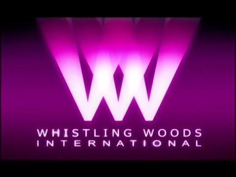 Celebrating 10 Years Of Excellence | Whistling Woods International