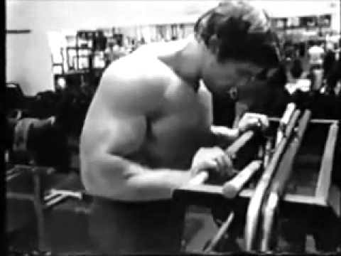 Arnold Schwarzenegger Training + Book Link