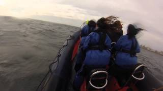 Extreme RIB Ride at Brighton Marina (60 second review)