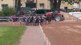 Vidéo de la course PMU PRIX DE QUETTEVILLE
