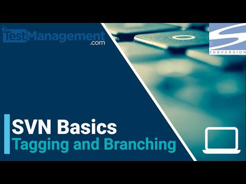 SVN  Basics - Tagging and Branching