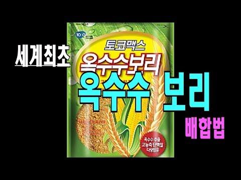 세계최초 옥수수보리(단품,대박보리) 떡밥 배합법#레시피#떡밥배합술
