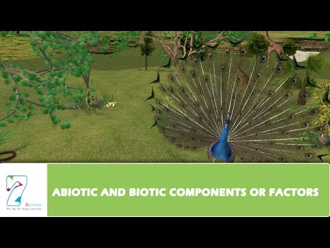 ABIOTIC AND BIOTIC COMPONENTS OR FACTORS