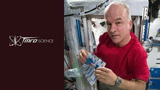 Science: The MARROW experiment - Discovery 1.04