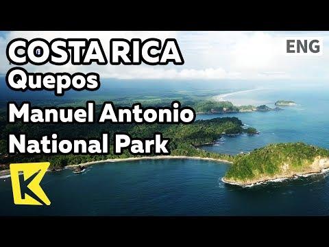 【K】Costa Rica Travel-Quepos[코스타리카 여행-케포스]마누엘안토니오 국립공원/Manuel Antonio National Park/Wild animals