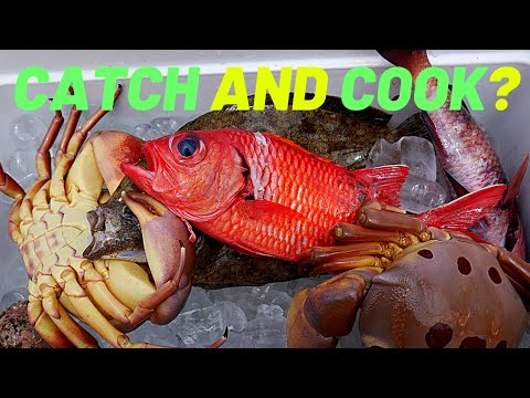 Spearfishing Hawaii: Diving With Subscribers! Something Stole My Fish(Catch And Almost Cook)