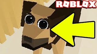 HELP THIS DOG FOR 100,000 ROBUX!!!! ROBLOX VET SIMULATOR