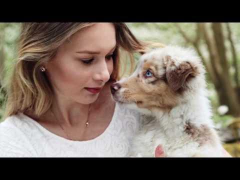 Australian shepherd puppy time lapse @alessaaussie