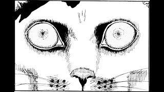 Cat Diary: Yon & Mu - A Weird Experience