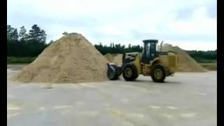 Video «Advantages of Paulownia» (Eng)