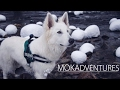 Mokadventures - When snow falls in the Black Forest
