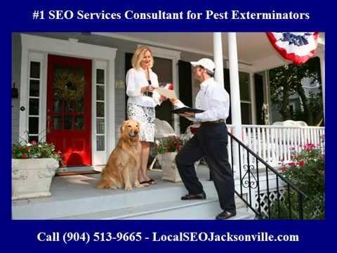 #1 SEO Services Consultant for Pest Control Exterminators in Jacksonville FL