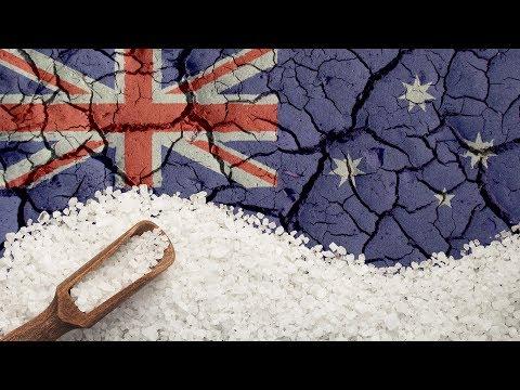 Election Salt