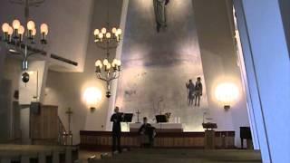 Vanha virsi Taalainmaalta, Liisa Karhu, viulu ja Timo Hacklin, harmonikka.mpg