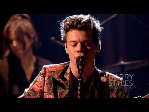 Harry Styles ♪ - Sweet Creature (at the BBC)