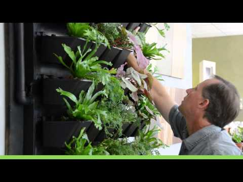 Living Air:  Green Walls Active Planting System