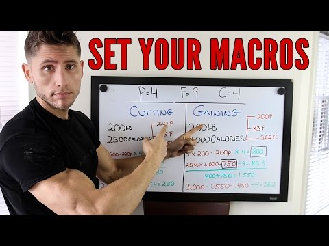 How To Set Your Macros (Protein, Fat, Carbs)