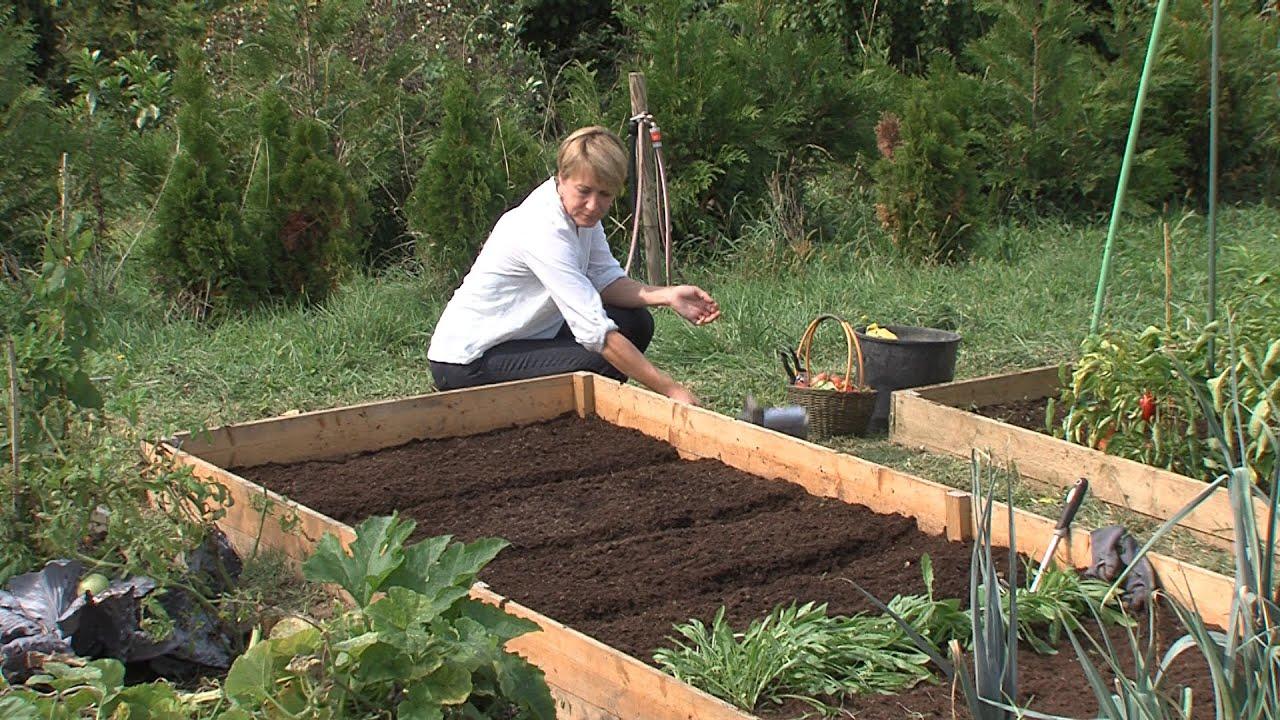 Evo kako urediti povrtnjak u jesen - YouTube