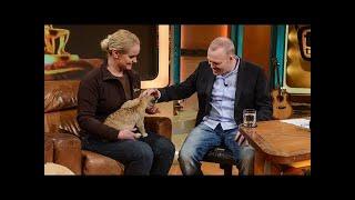 Mit süßem Löwenbaby kuscheln - TV total classic