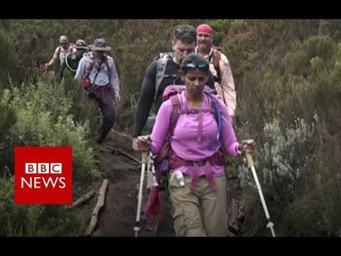 The woman leading amputees to the top of Mount Kilimanjaro - BBC News