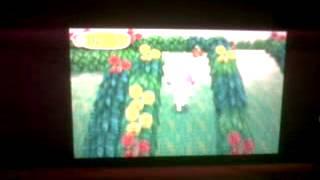 Animal Crossing New Leaf- En la isla tropical