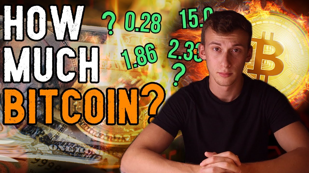 How Much Bitcoin You Should ACTUALLY Own.. (Less Than You Think)