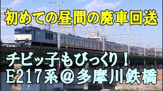 E217系の初の昼間の廃車回送・チビッ子も興奮・多摩川鉄橋