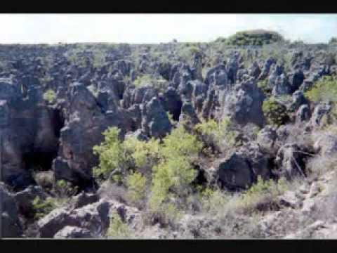 traveling fans and travelers community -visit Nauru