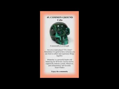49_COMMON_GROUND_Celia
