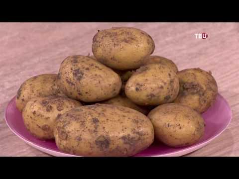 Можно ли похудеть на картошке? Отзывы похудевших: -53 кг