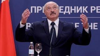 «Деньги под ногами». Лукашенко призвал наладить сбор вторсырья