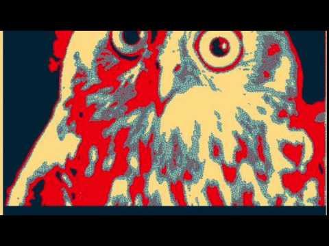 Owl Satire Show 8