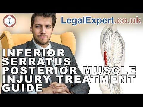 Inferior Serratus Posterior Muscle Injury Treatment Guide ( 2019 ) UK